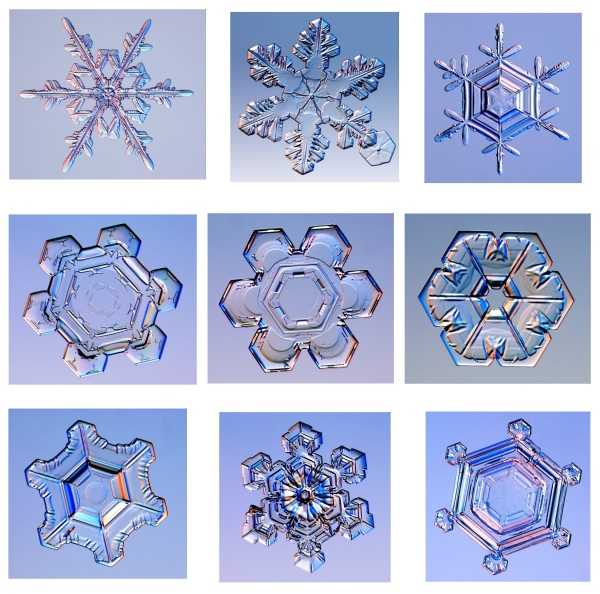 real snowflake photographs