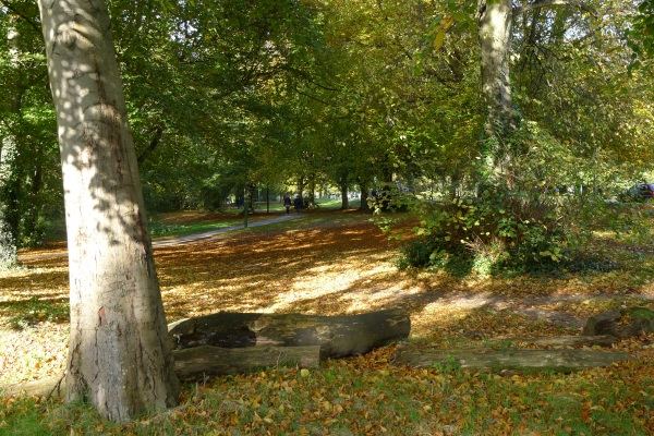 Southampton Common in autumn (colour)
