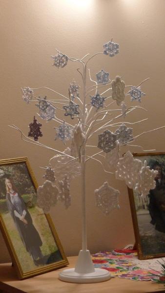 0213-snowflaketree