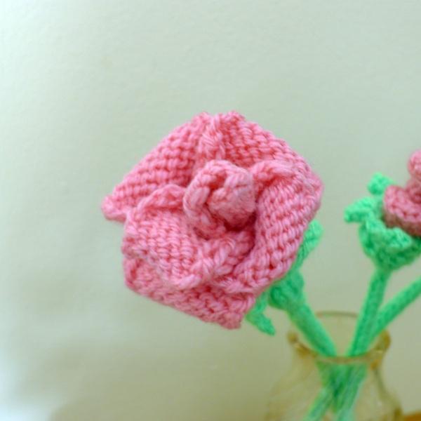 0229-rose1