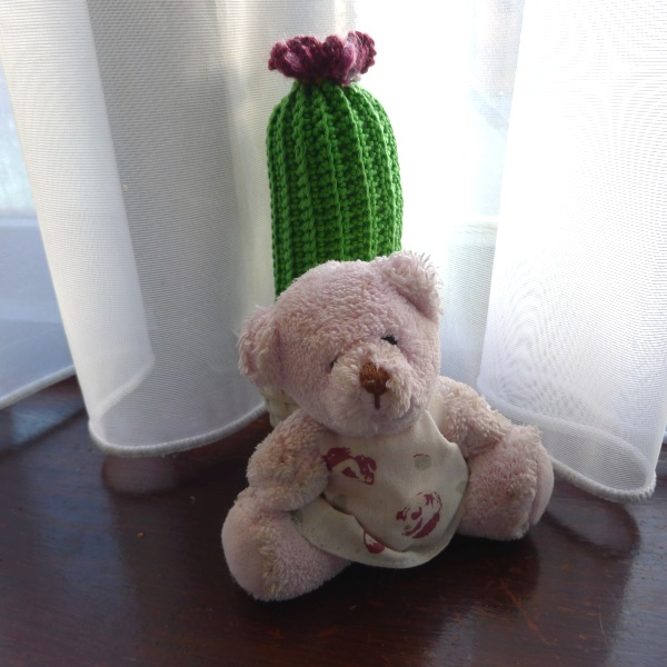 0233-bear&cactus