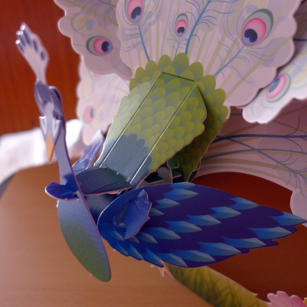 0246-wingsview