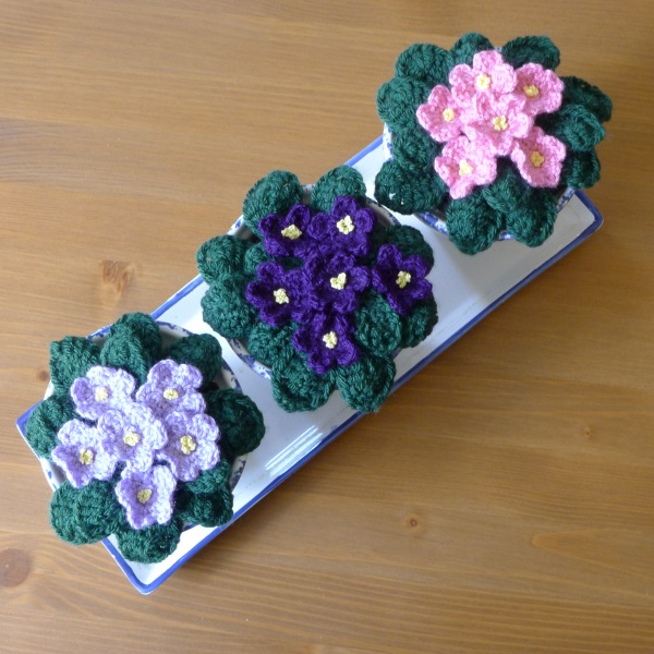 crochet African violets