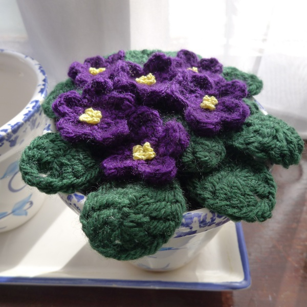 Crochet African violets ? Rainbow Junkie