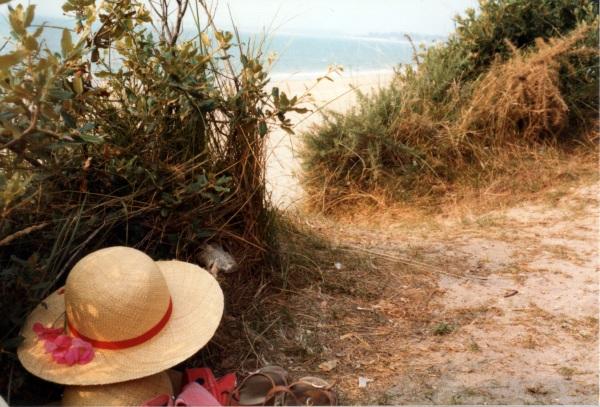 0270-beachold
