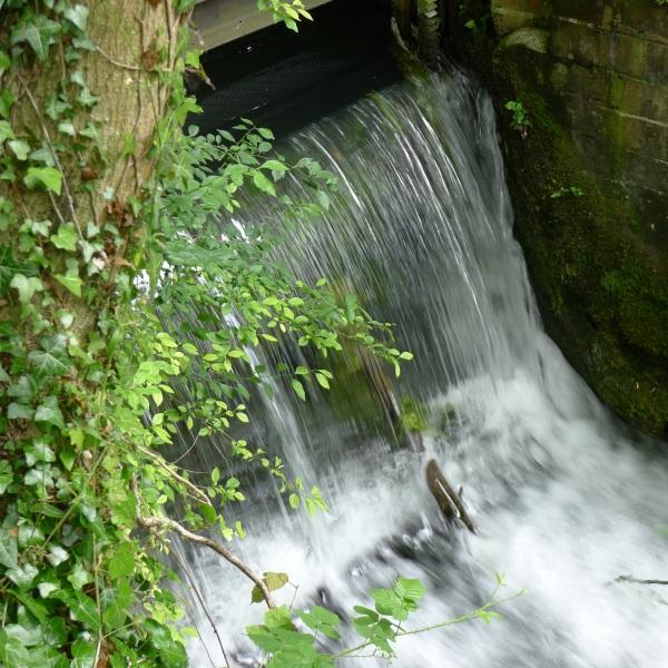 Photo Challenge1631-water