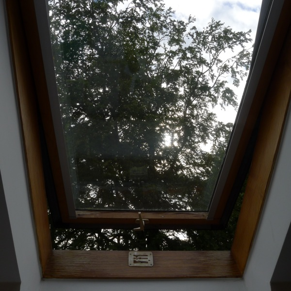 0275-windowview