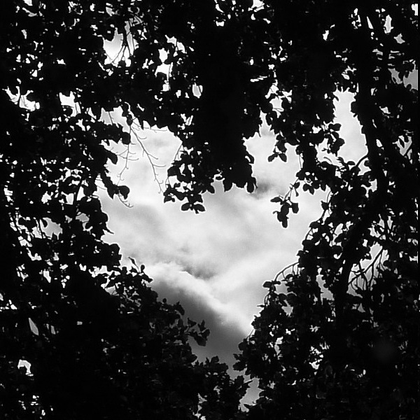 Heart - monochrome