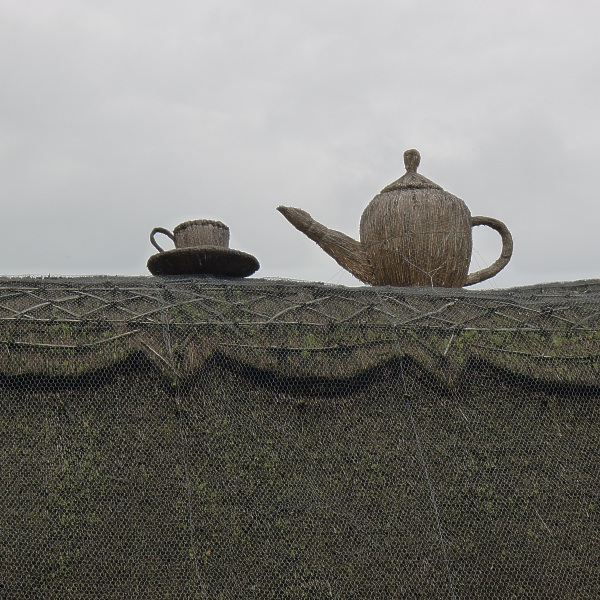 Thatch cup and teapot