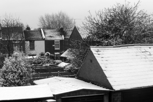Snow today in black and white