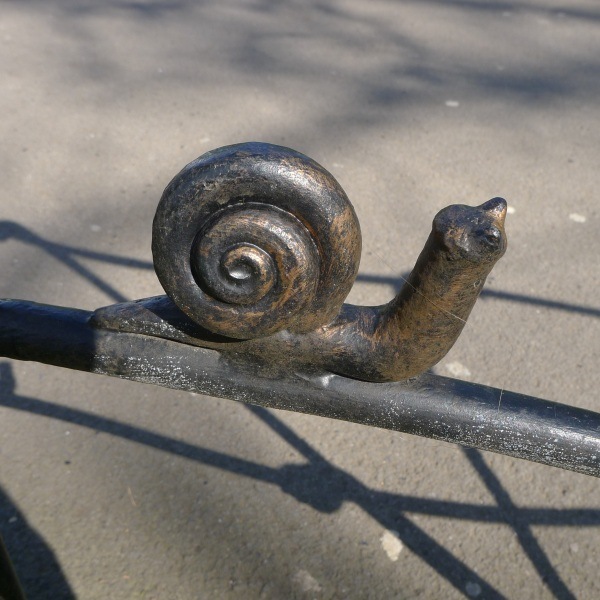 Snail on fence