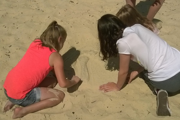 Fossils in the sand