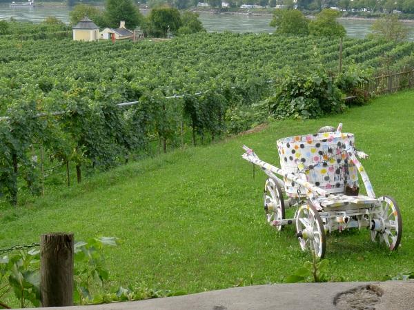 Grapes and cart