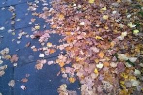0406-pavement