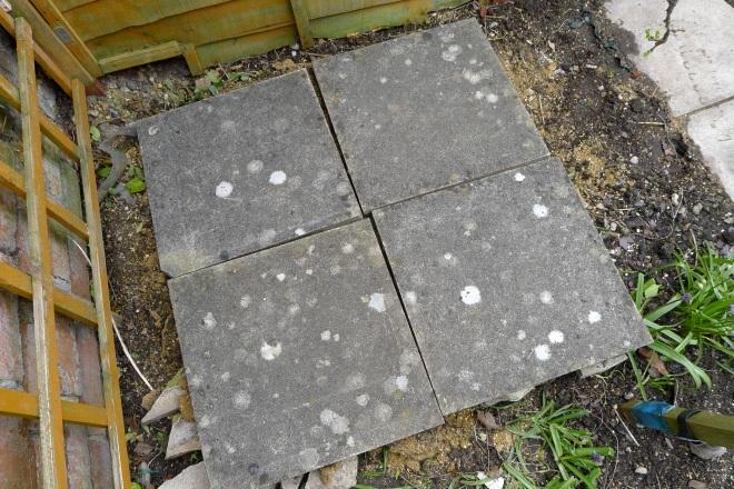 Slabs for step ladder