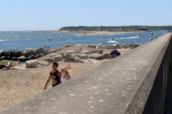 Photo Challenge -1632 Summer