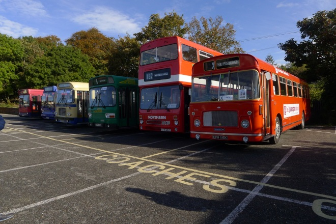 0520-a-row-of-buses