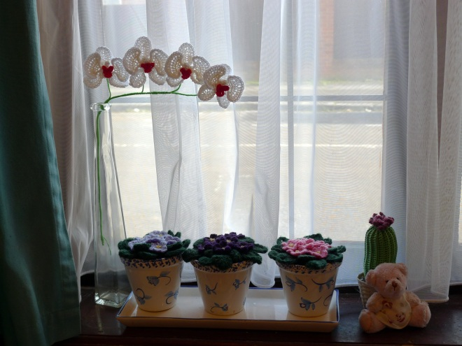 0551-orchids-on-windowsill