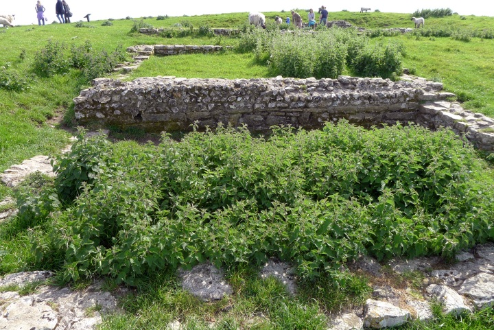 Remains of Romano- British priests house