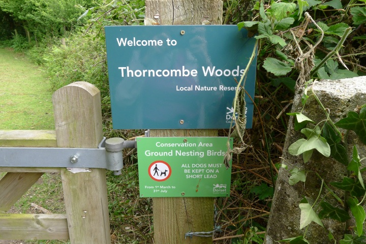 Thornecombe Woods sign