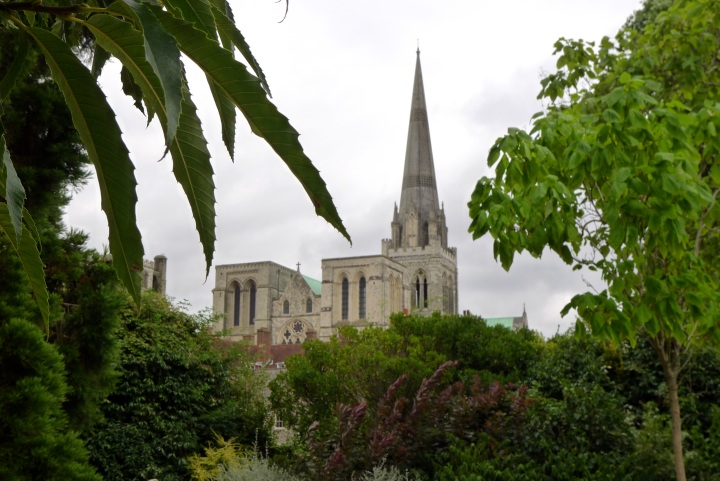 Cathedral spire seen through trees
