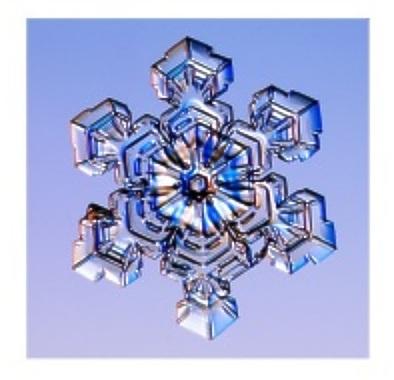 real snowflake photograph