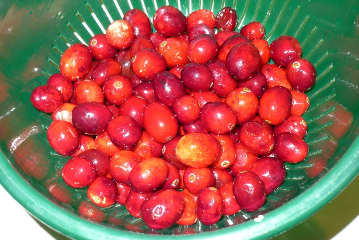 washed cranberries