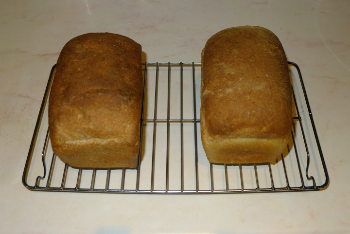 two loaves