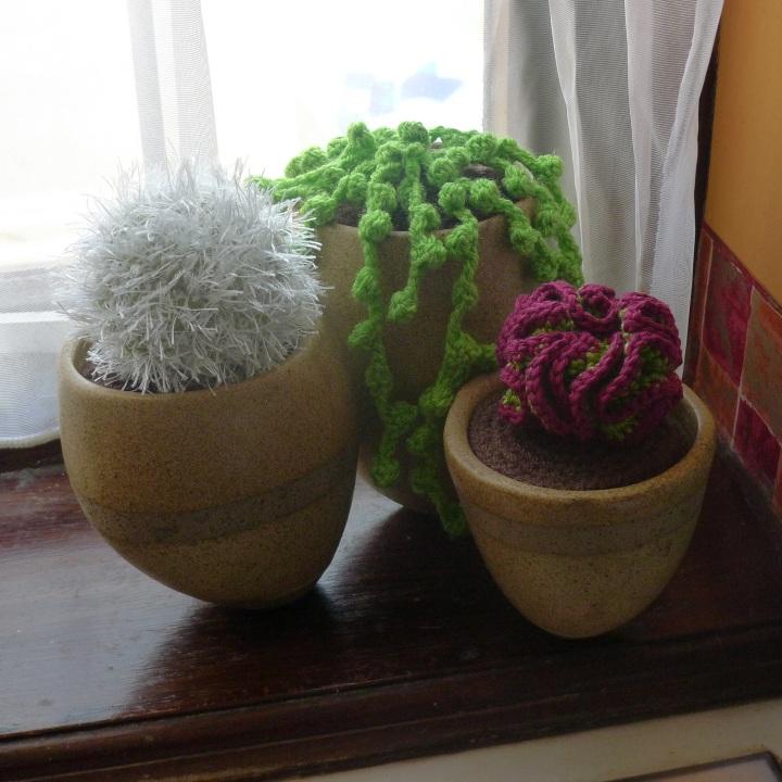 pot on kitchen window sill