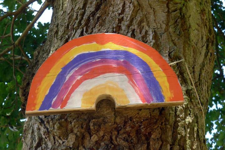 child rainbow